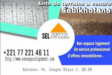 terrains à vendre à Sébikotane
