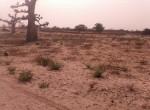 terrains à Diaksao